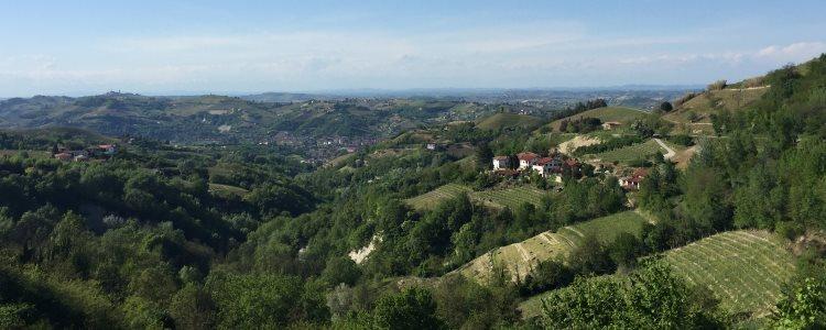 Vigne Partrimonio Unesco Cerutti a Cassinasco, Asti